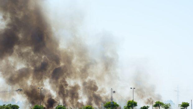 שריפות הענק בקליפורניה פגעו בתעשיית היין האזורית