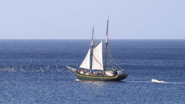 כ-33% מהנזקים לספינות נגרמים מהתנגשויות