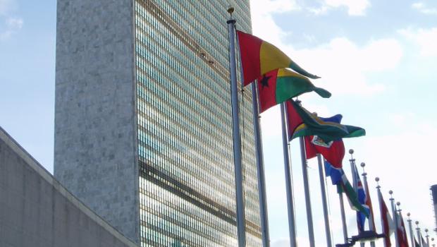 """האו""""ם מזמין מבטחים להשתתף בסקר עולמי"""