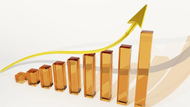 ביטוח ישיר ושלמה ביטוח מובילות את ענף הביטוח בתשואה להון ב-2017