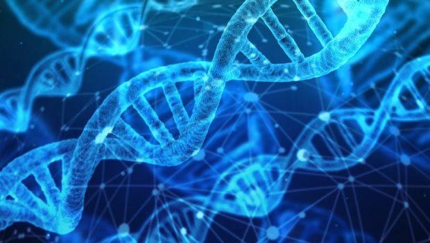 סיכון חדש לעולם הביטוח – ביולוגיה מלאכותית / מאת ישראל גלעד