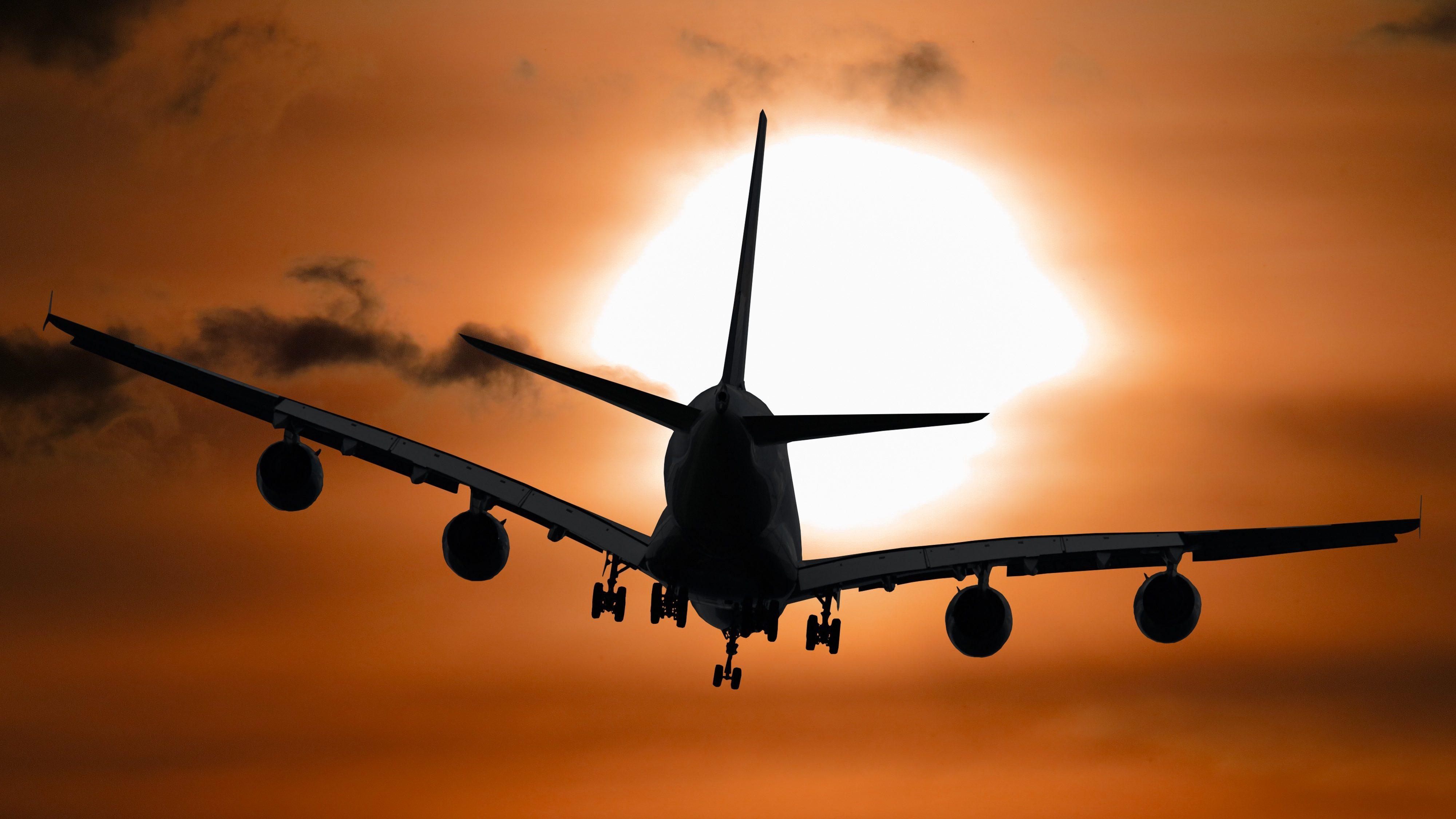 """הרפורמה בביטוח נסיעות: בזמן שענף הביטוח ממתין לדיון בבג""""ץ – הוגשה הצעת חוק מטעם סוכני הנסיעות"""