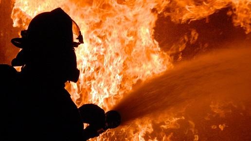 היקף נזקי השריפות באוסטרליה מגיע לסך של 1.13 מיליארד דולר
